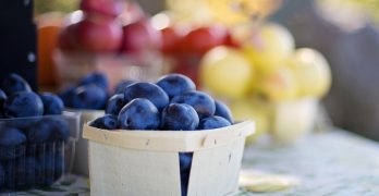 Can Food Be Healthy And Fast?